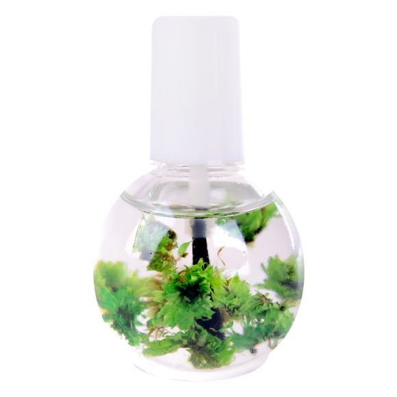 Ulje za zanoktice sa suvim cvećem DFNO-03 Zeleno 12ml
