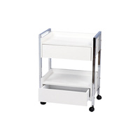 Cosmetic trolley DP6004 with two shelves and two drawers