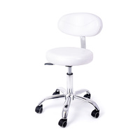 Technician Chair DP9934 with Backrest and Adjustable Height