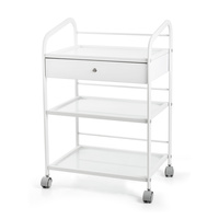 Cosmetic trolley DP6039A with three shelves and one drawer