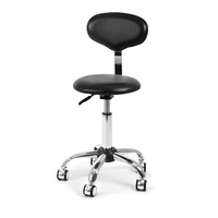 Technician Chair Y887 with Backrest and Adjustable Height