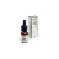 Essential Oil Magnolia 10ml