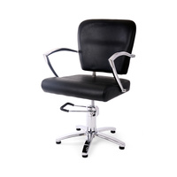Hair Styling Chair with Hydraulic DP-1003