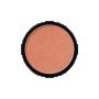 Bronzed HDBS01